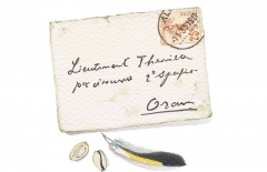Small Letter, goldfinch feather & cowries